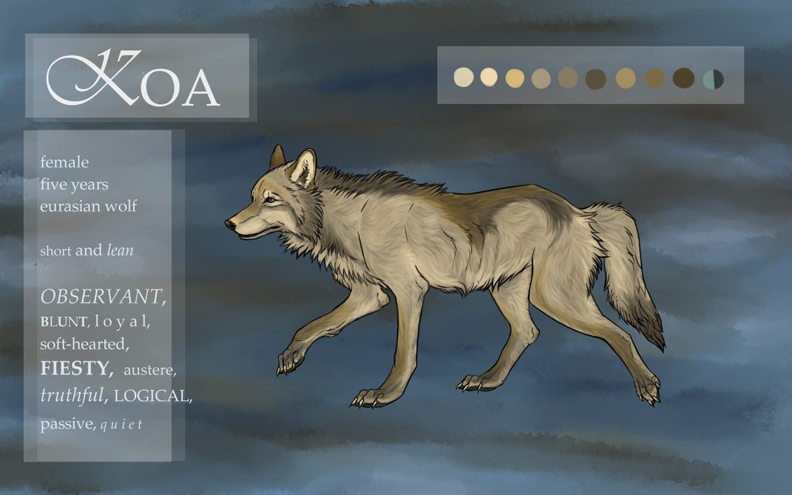 Koa's Reference 2014 by chillingbreathofdawn
