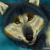 Resool Avatar (Updated) by Koahara