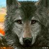 WolfQuest Anniversary Avatar by Koahara