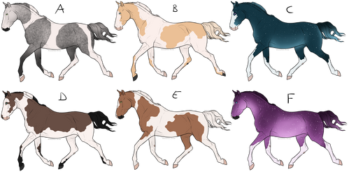 # Equine Adoptables - OPEN [6/6]