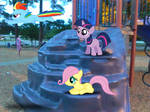 Filly Playtime