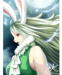 One piece 888 - Carrot
