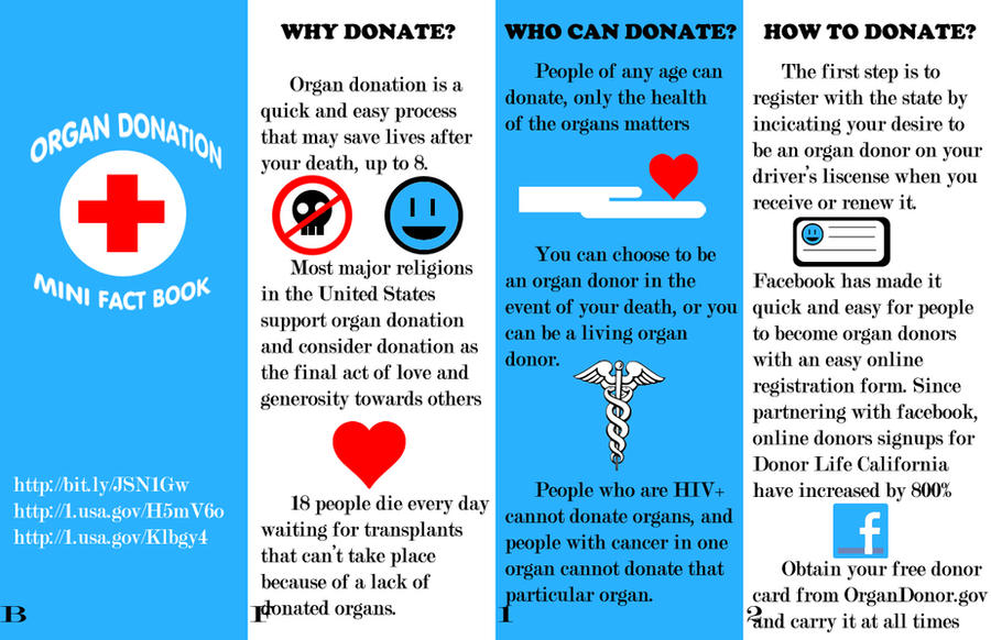 Buy Argumentative Essay Organ Donation