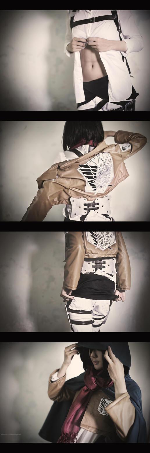 Shingeki no Kyojin: Mikasa Ackerman by Itchy-Hands