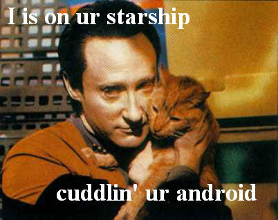 Data's Cat is an LOL Cat