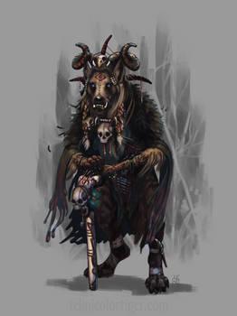 Yhorsa The Shaman
