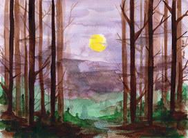 Dark Woods by lyralimn