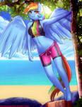 Rainbow Dash Swimsuit