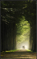 Walking on a bright lane by Esperimenti
