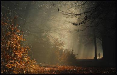Walking in mystery land