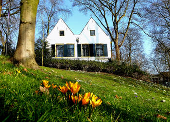 Utrecht spring promise by Esperimenti