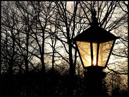 Light in dark times by Esperimenti
