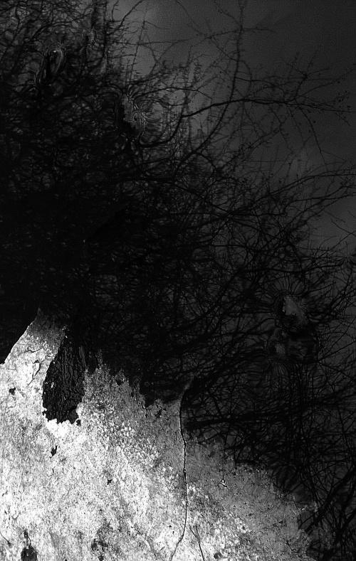 Wp 20141225 010 by MariuszKaminik