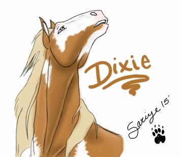 Miss Dixie  by SariyeWolf