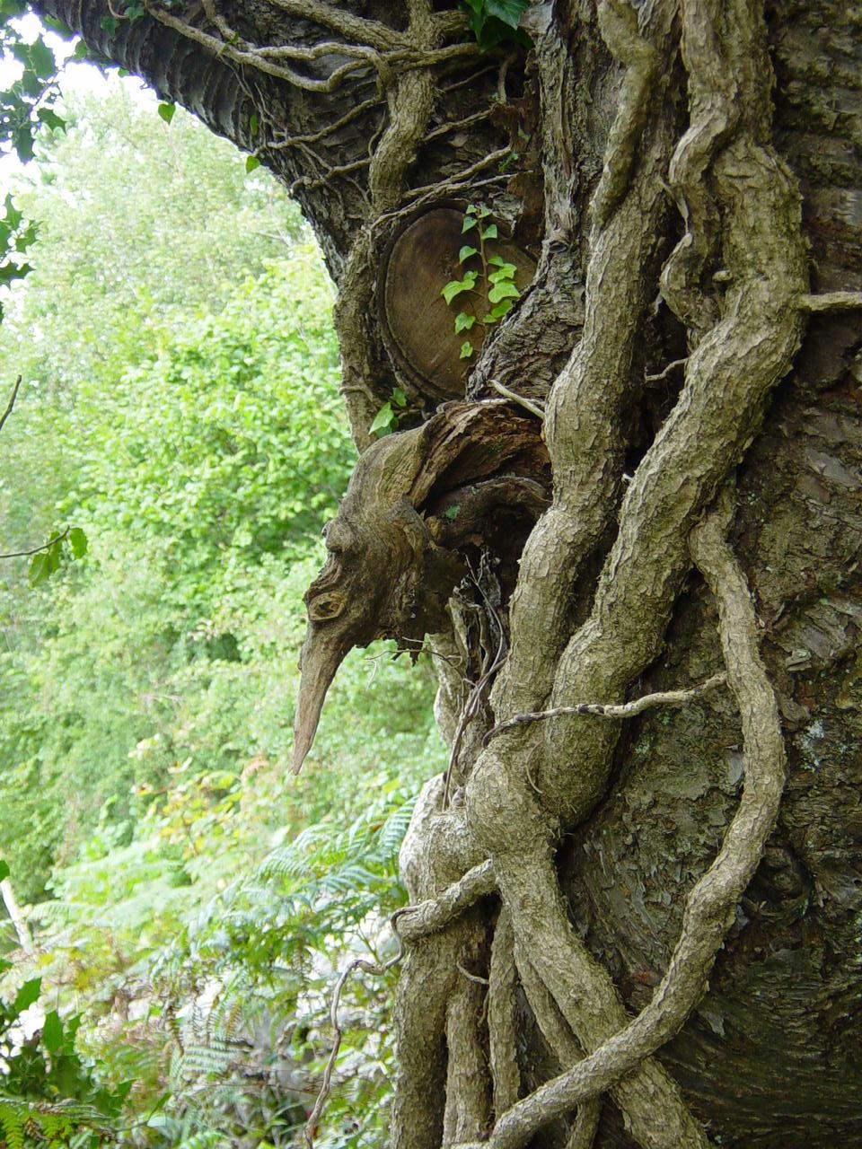 tree goblin 1 by RTyStock