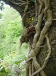 tree goblin 1