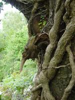 tree goblin 2 by RTyStock