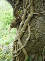 tree goblin 3 by RTyStock