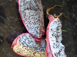 dragon fruit slices by RTyStock