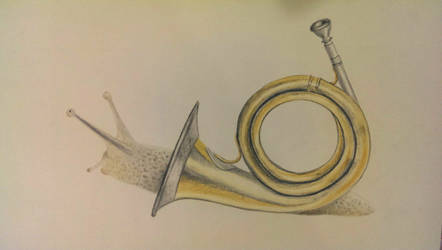 The Post Horn Snail by BellaPotchy