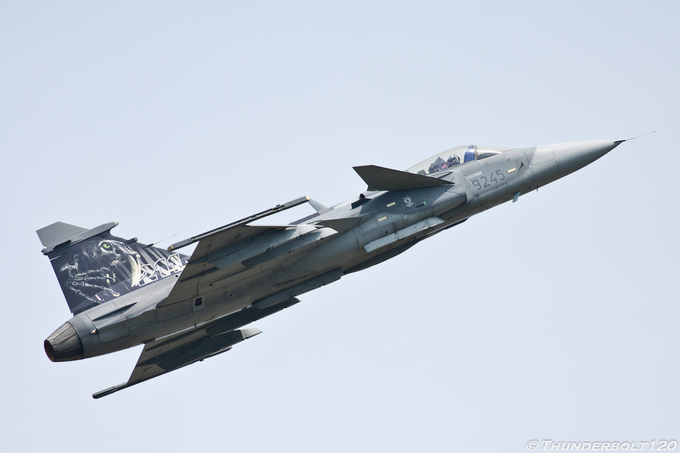 JAS 39C Gripen 9245