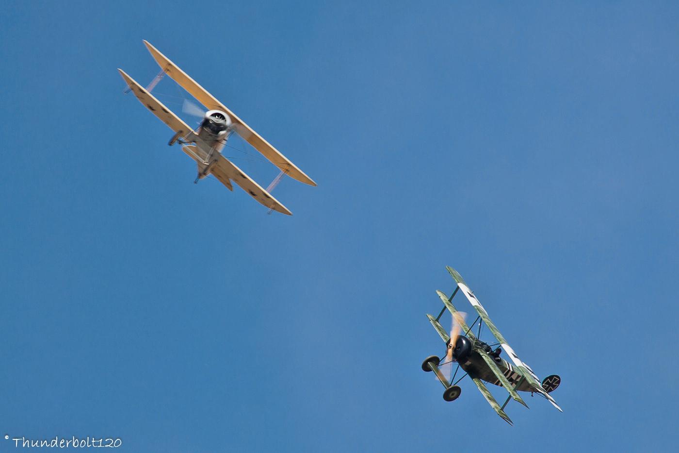 Fokker Dr.I and FVM O1 Tummelisa