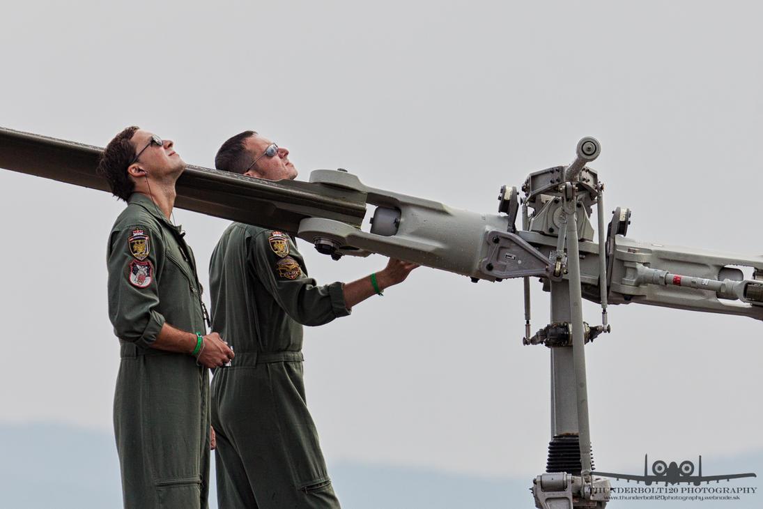 Austrian pilots