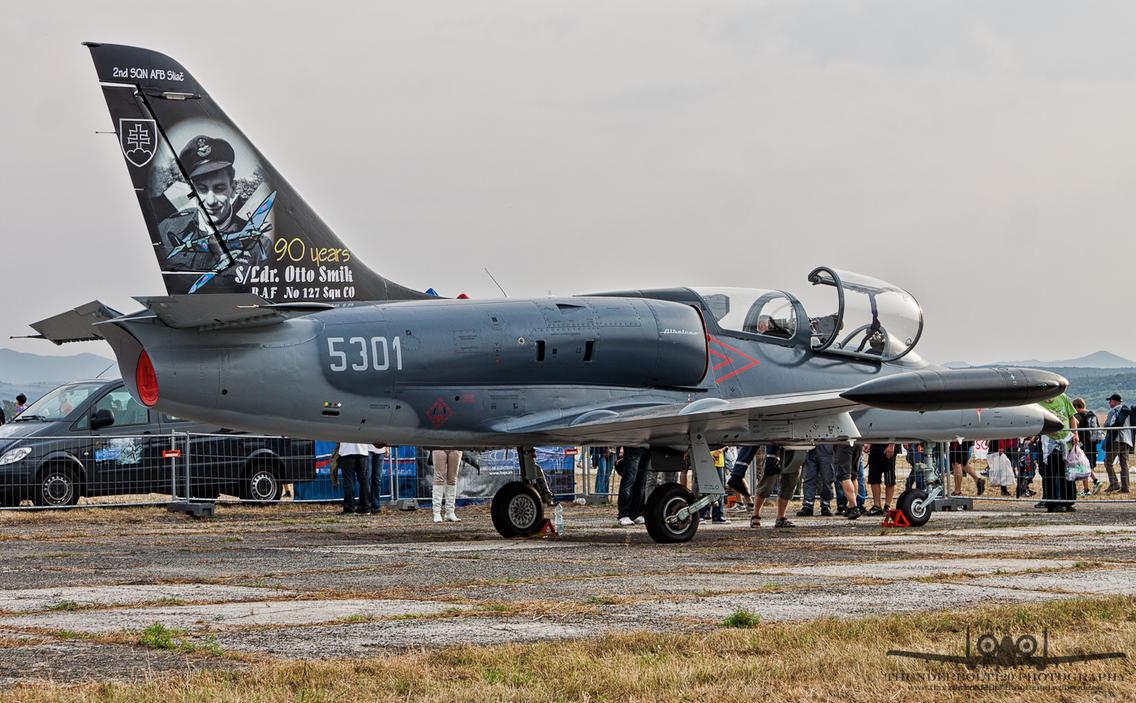 Aero L-39CM Albatros 5301