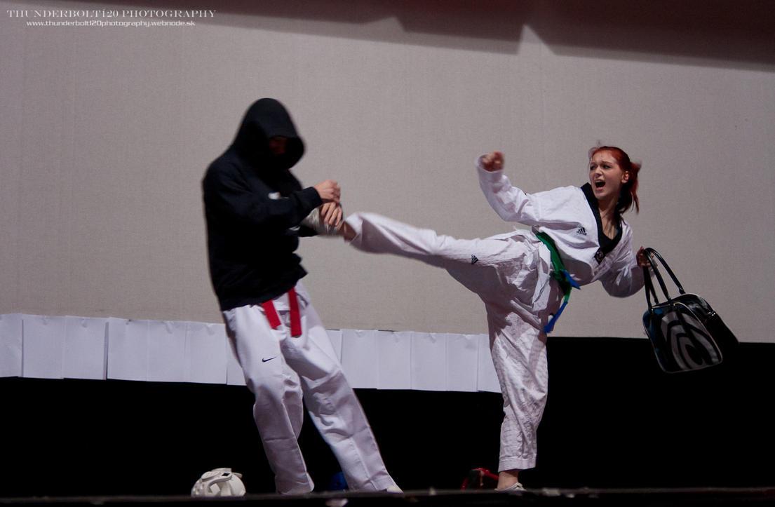 ŠKP Ryong Taekwondo