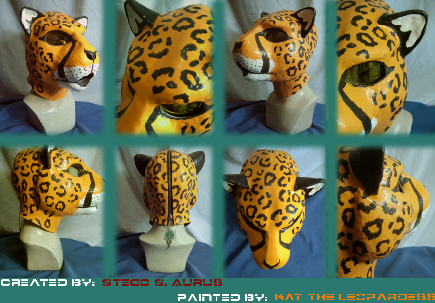 Painted Gas Mask: CatCoon by Catwoman69y2k
