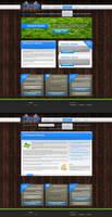 Adsimilis website design