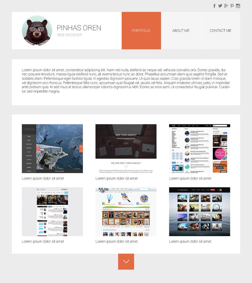 Web designer portfolio by pinhasoren
