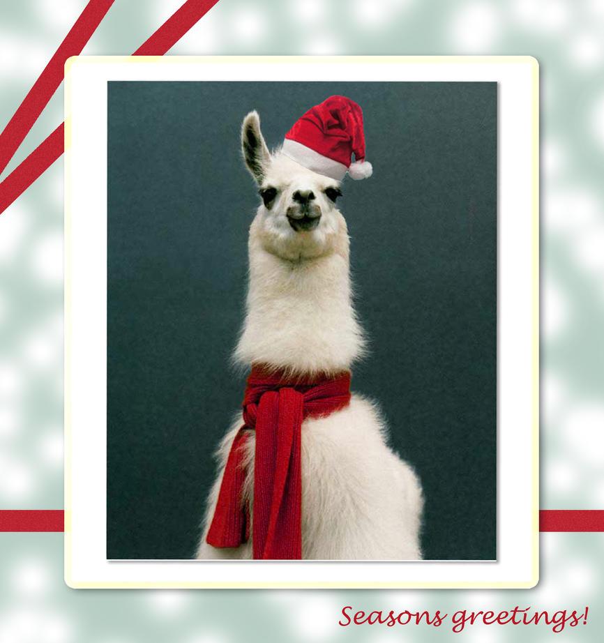 Llama Christmas by EmperorLlama on DeviantArt