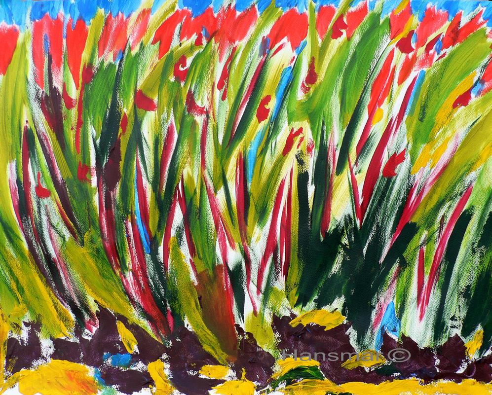 Tulips by Hansmar