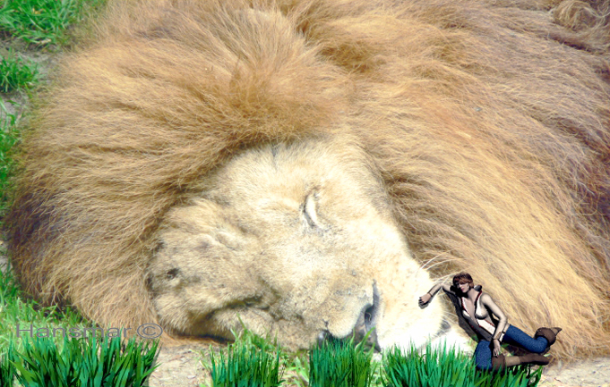 Tickling The Lion by Hansmar