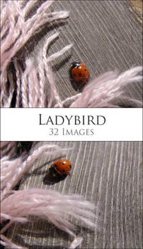 Ladybird Pack