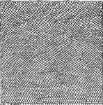 Handdrawn Dragon Scale Texture