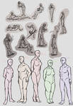 Poses and Body Types