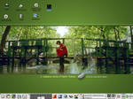Amelie Desktop by sammlea