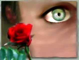 Amour by sammlea