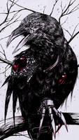 Through The Eyes Of A Raven