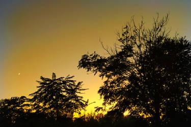 Sunset time 2