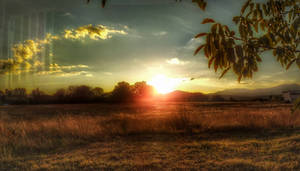 Sunset on the meadow  2