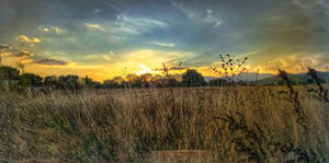 Sunset on the meadow 3