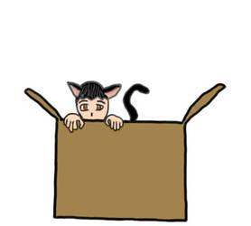 Neko in a box