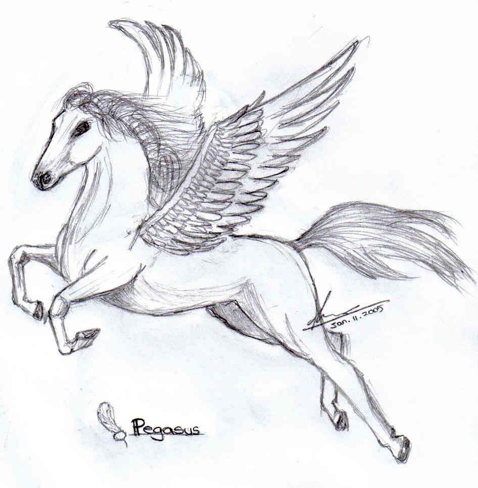 Winged Horse By Crystalz97 Winged Horse By Crystalz97 How To Draw Pegasus  Step