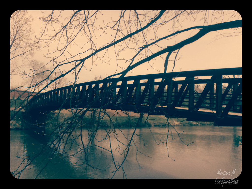 The Bridge by LenSpirations