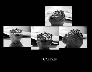 Cassius by Malldibion