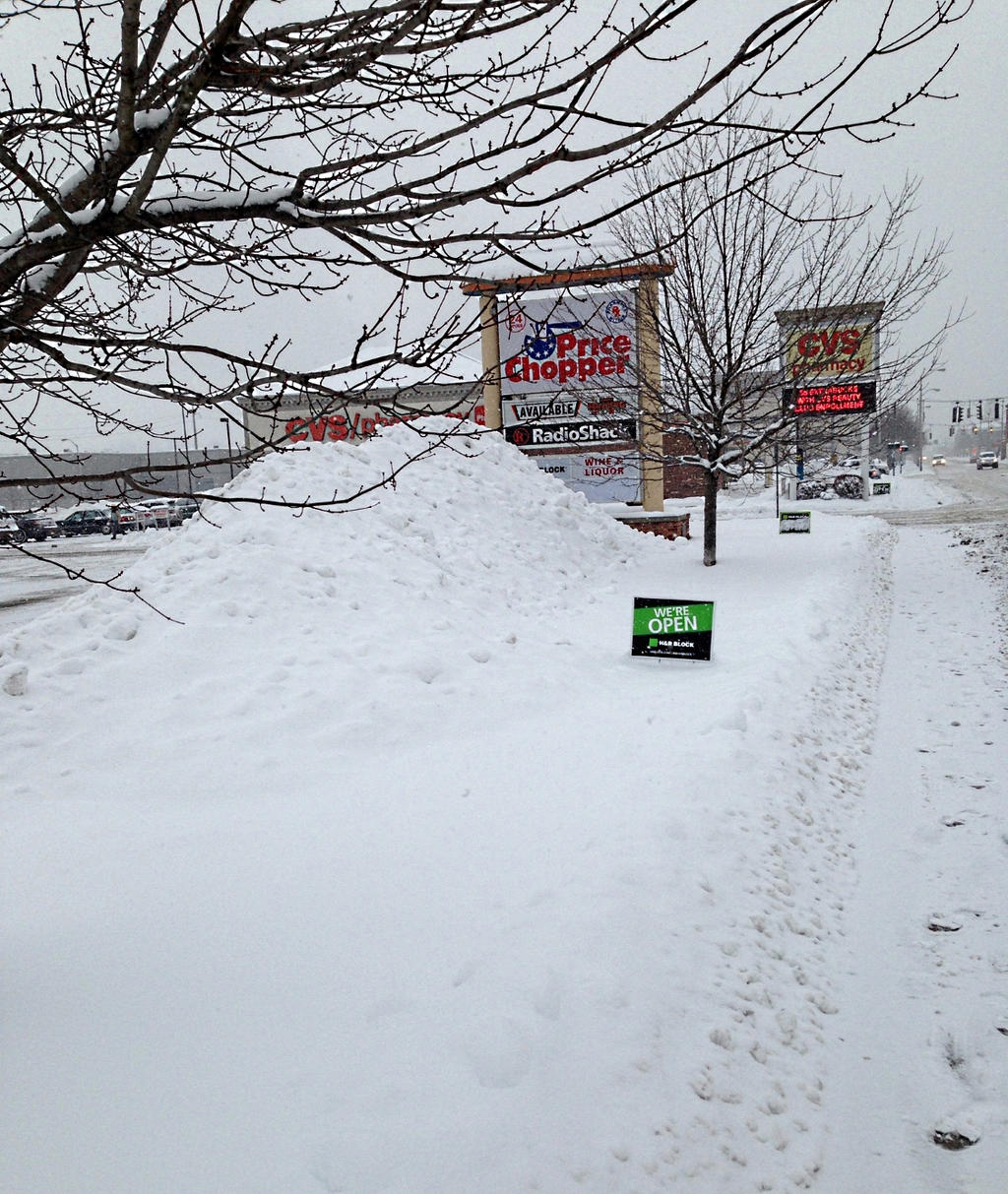 Snow Covered Neighborhood Groundhogs Day 2015 4 By Steve