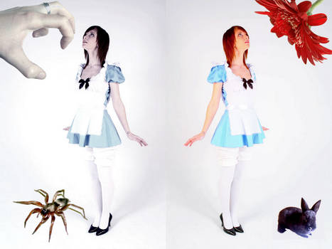 Alice in Whichland?